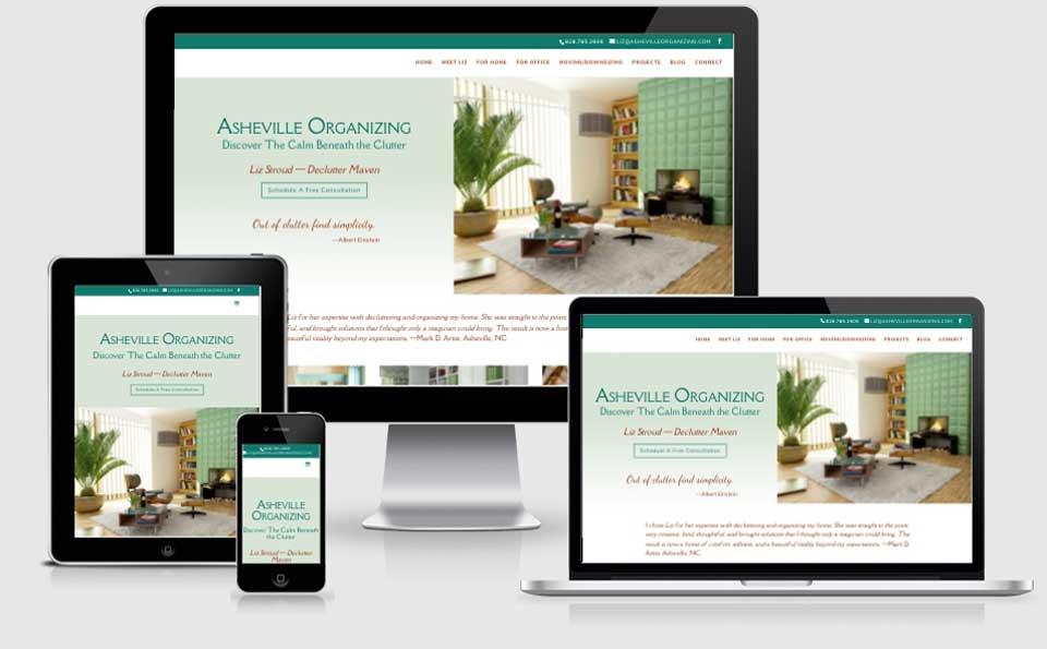 Asheville Organizing website