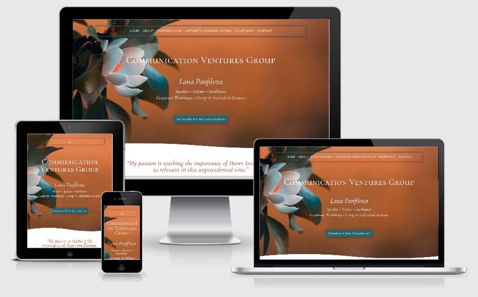 Lana Panfilova Communication Ventures Group