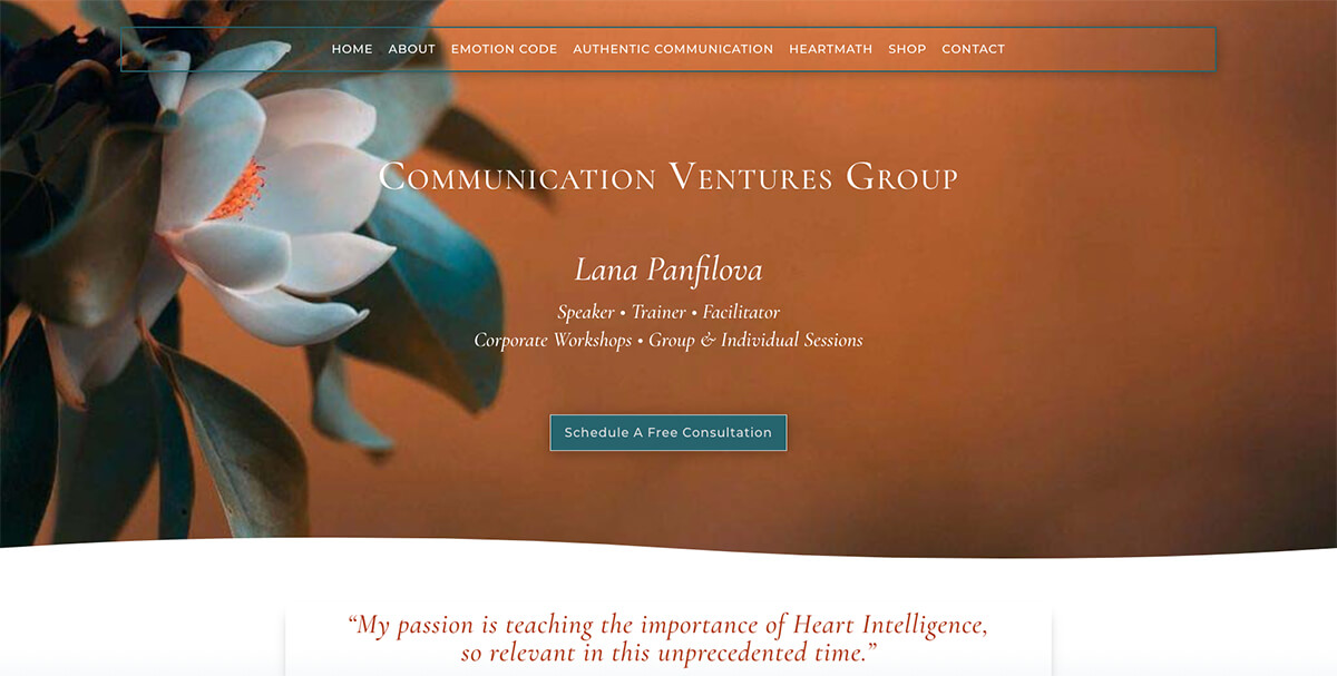 Lana Panfilova Communication Ventures Group